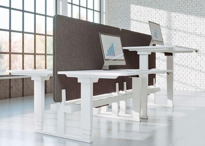 Ergotron Adjustable Desks